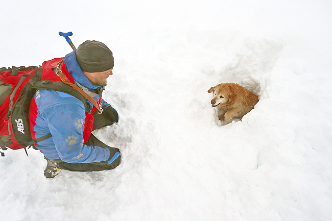 Lukas helps find people trapped in avalanches. - DPA