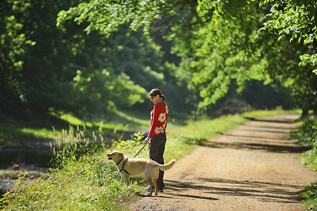Williams and Hailey take regular walks along the C&O Canal