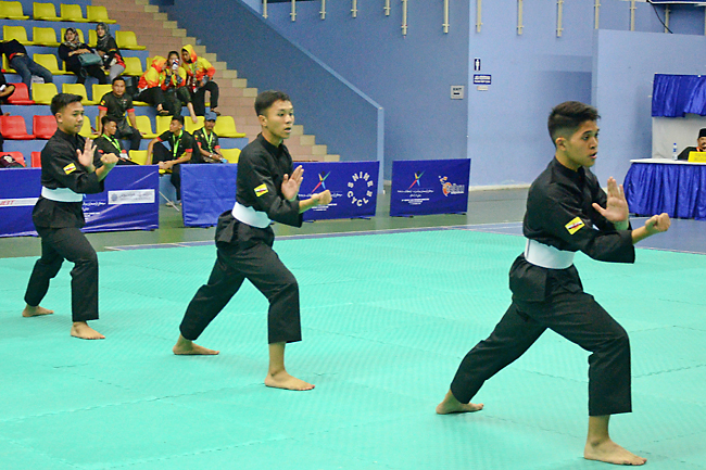 10th BIMPNT-EAGA Friendship Games 2018: Friendship Games pencak silat results